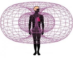 campo-energetico-del-cuore-Percorso.jpg-dell'Amore